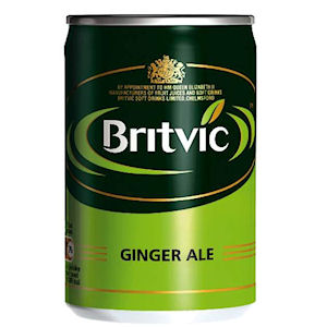 BRITVIC GINGER ALE MIXER CANS (150ml) x 24