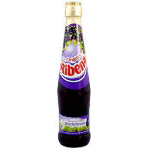 RIBENA BLACKCURRANT SQUASH BOTTLES (600ml) x 12