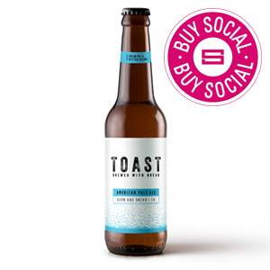 TOAST ALE BOSTON ALE (330ml) x 12